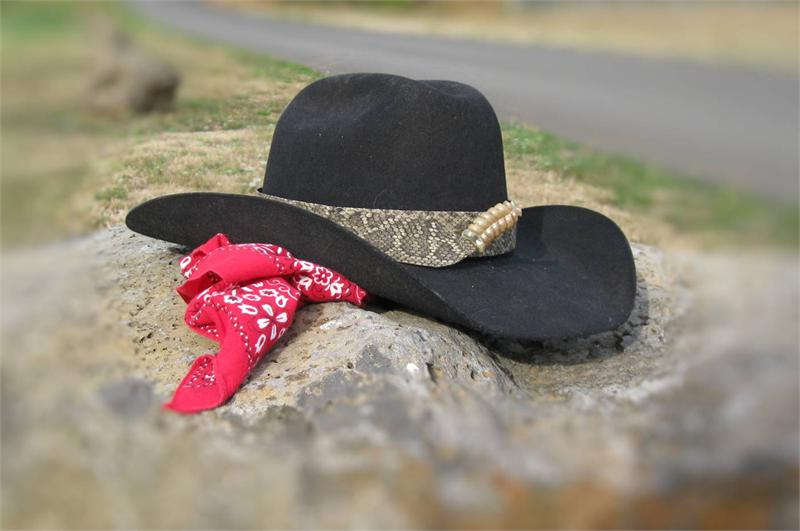 d3f5c834a1ac0 Western Rattlesnake Skin Hat Band from Tombstone