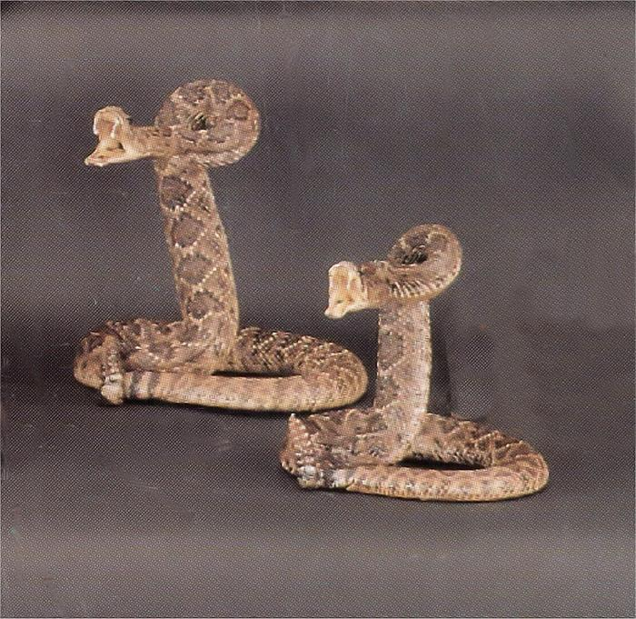 17b25a94346bc Stuffed Rattlesnake with striking head from Silver Hills Trading Company
