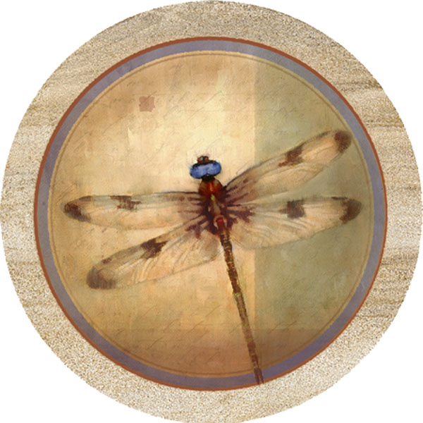 Natural dragonfly sandstone beverage coaster by thirstystone - Stone absorbent coasters ...